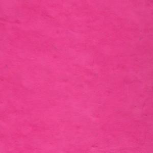 image-papier-nepalais-ou-lokta-uni-saumon