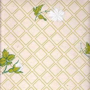 Image-papier-nepalais-fantaisie-fond-naturel-impression-d-un-quadrillage-et-de-boutons-de-fleurs