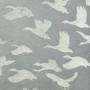 Papier népalais gris et canards agents